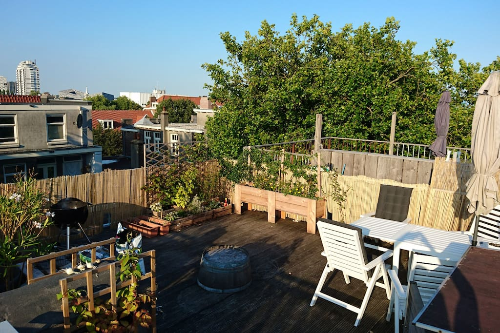 The roof terrace!