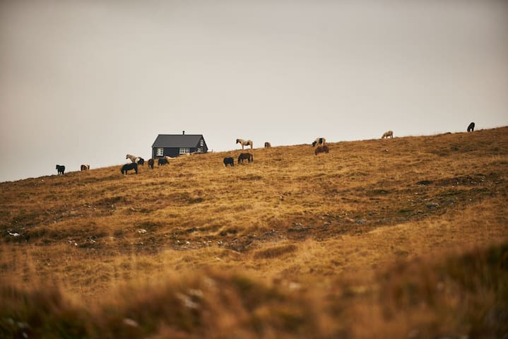 Piece of Heaven - The next village is Búðardalur - House