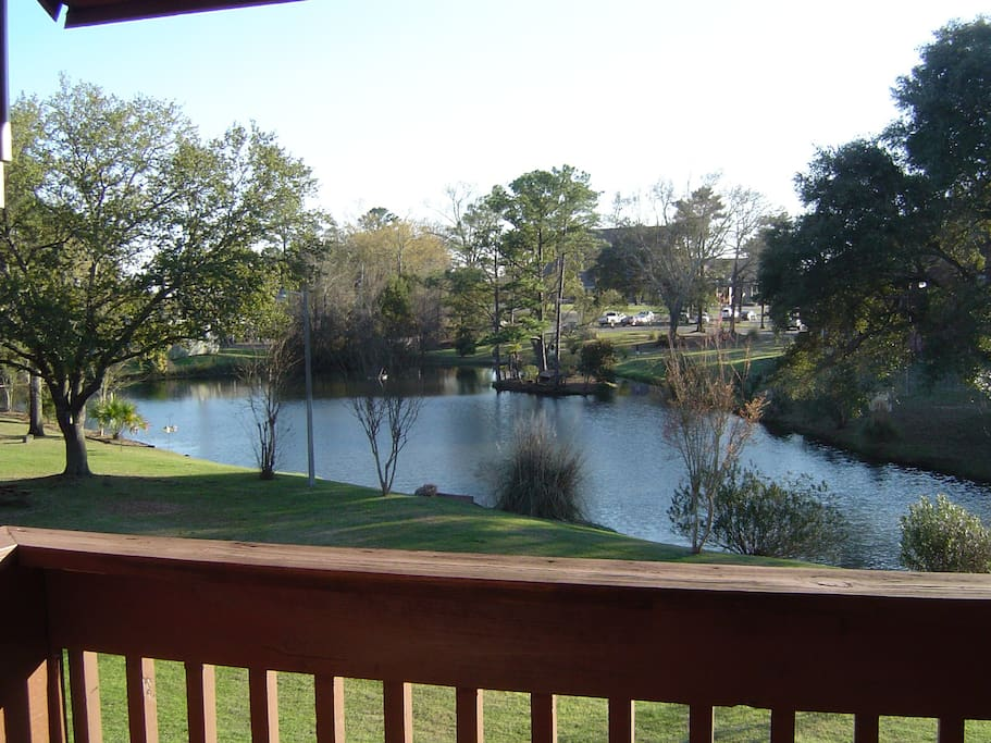 Fantastic, peaceful view of small lake and trees! This is the ACTUAL view from sitting balcony.