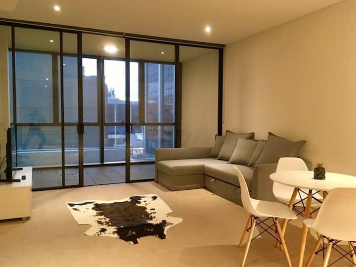 CBD One-bedroom New Apartment