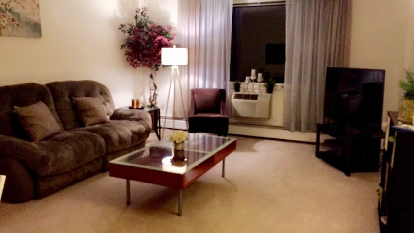 Room in luxury building near Harvard - Cambridge - Apartment