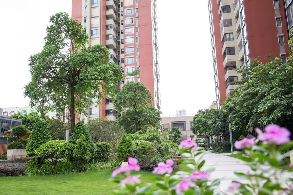 安全并绿化的小区花园