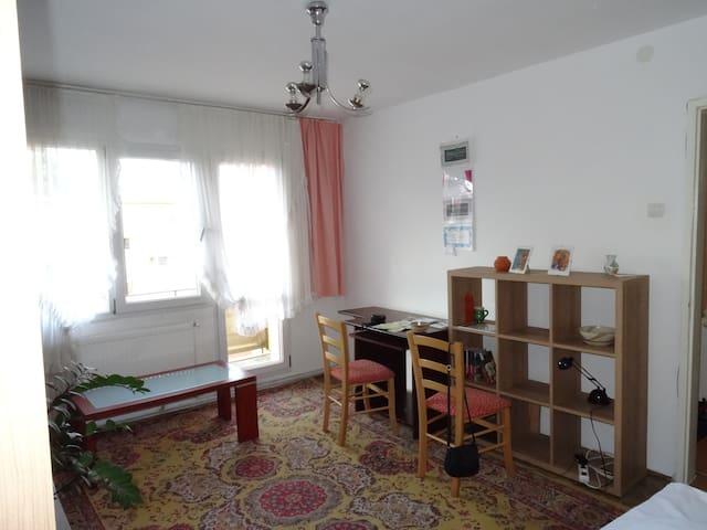 Chrissy's cosy, spacious home (1br) - Brasov - Appartamento