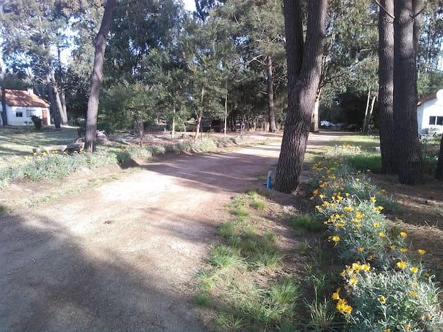 Balneario Paraíso Suizo ¡Es único! - Jaureguiberry - Chalet