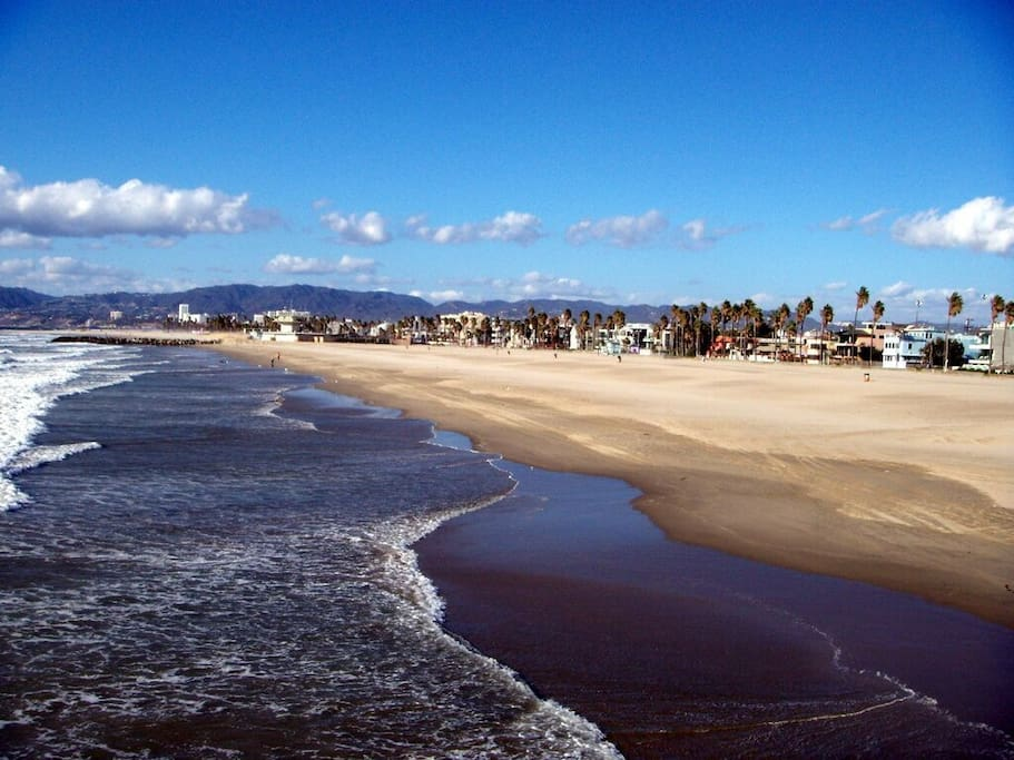 Welcome to Venice Beach! A short stroll from your cottage.