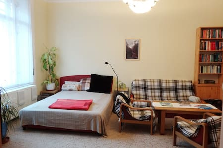 In the city center - Budapest - Bed & Breakfast