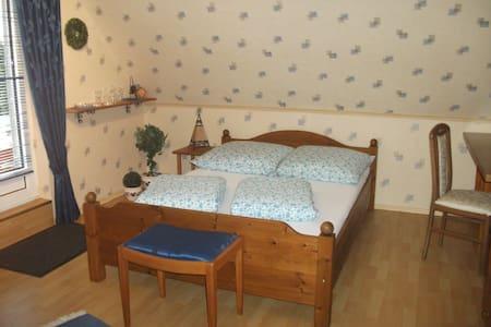 Großes Zimmer mit Dachterrasse - Hemmingstedt - บ้าน