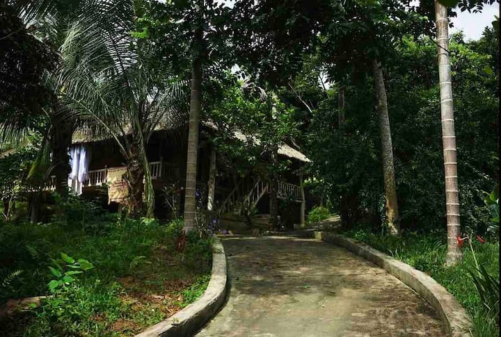 GreenVietnam EcoFarm & Lodge