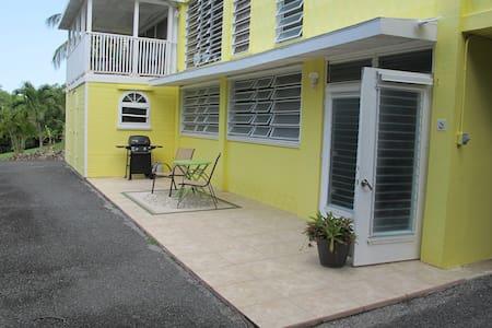 Cruzan Cottage Escape - Christiansted - Apartmen