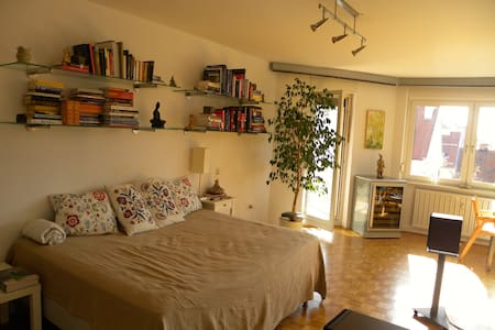 Cosy Inexpensive City Center Apt.   - Maribor