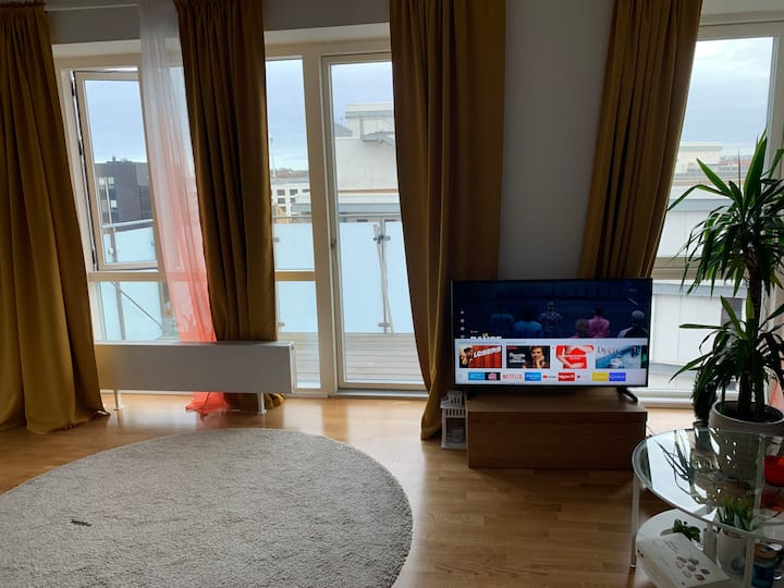 3 værelses lejlighed i Aalborg centrum