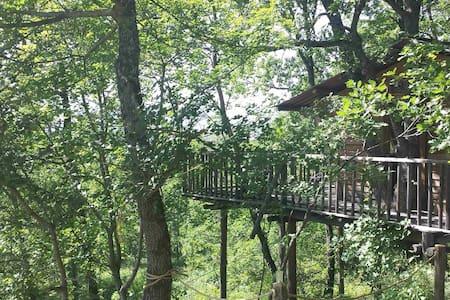 Magnifique cabane dans les arbres, vue panoramique - Thoard - Casa sull'albero