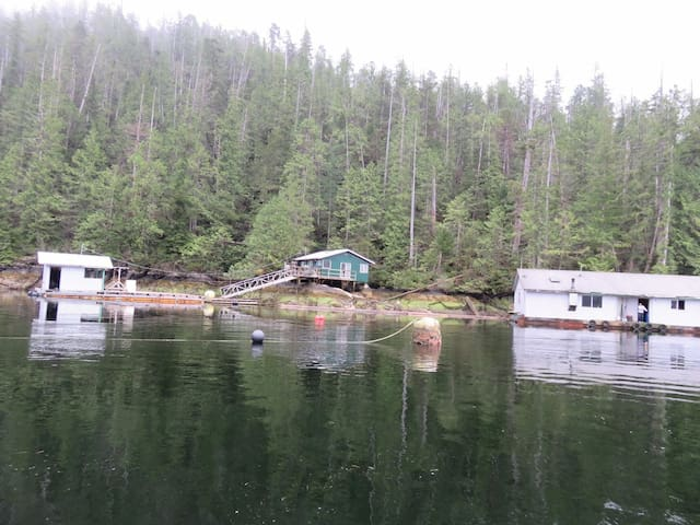 Effingham Inlet Oyster Farm - boat access only - Bamfield