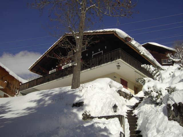 Appartement in sunny Chalet Abigrot