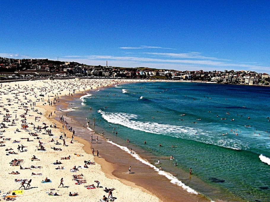 World-famous Bondi Beach is a short commute away (train station 200m from my apartment) - or walk/run there on the City2Surf route from the front door.