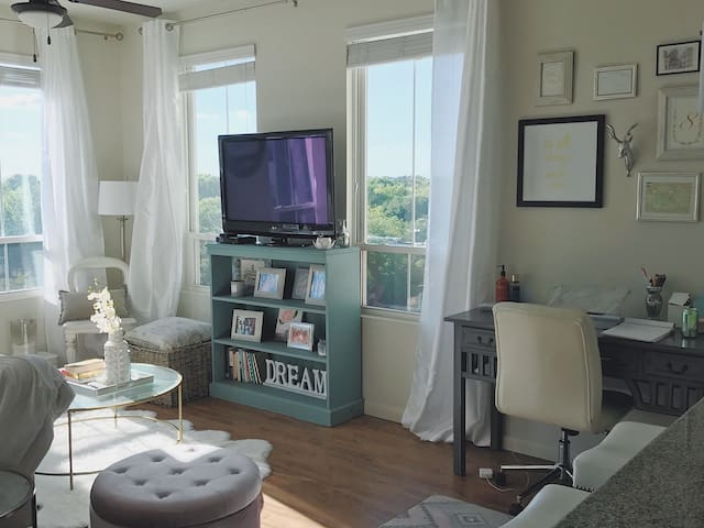 Chic 1br with a View - Mount Pleasant - Byt
