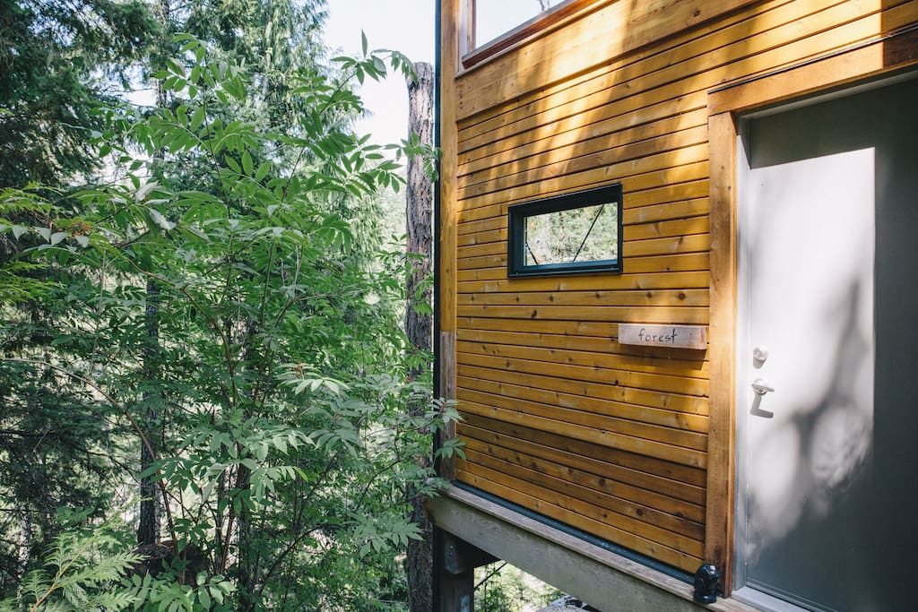 Side entrance to Treehouse Suite kitchen