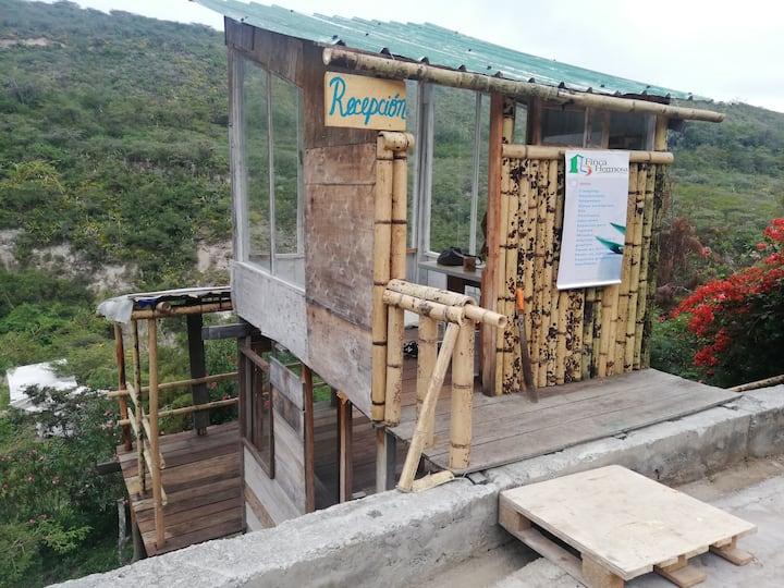 Finca Hermosa / Camping / Senderos / Río