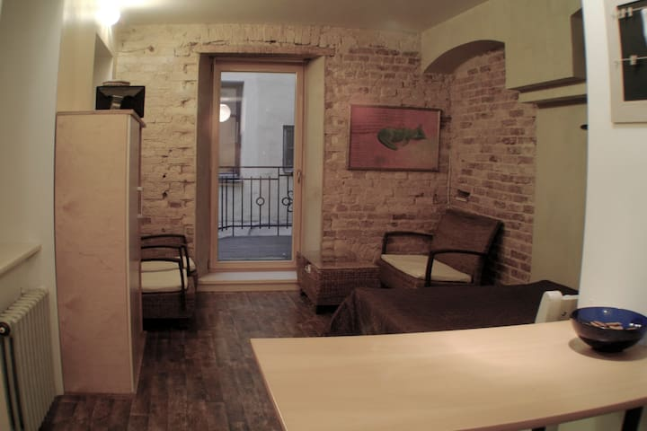 Quiet stay in noisy environment! ;) - Riga - Appartement