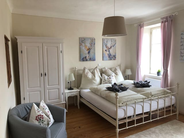 Beautiful bright apartment in the old town center