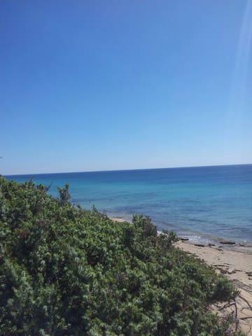 Bilocale ad un passo dal mare - Campomarino - Appartement