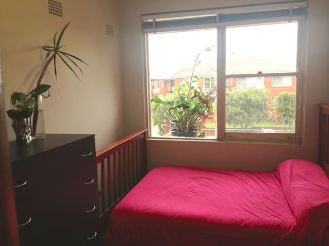 Sunny room in a friendly place - Belmore
