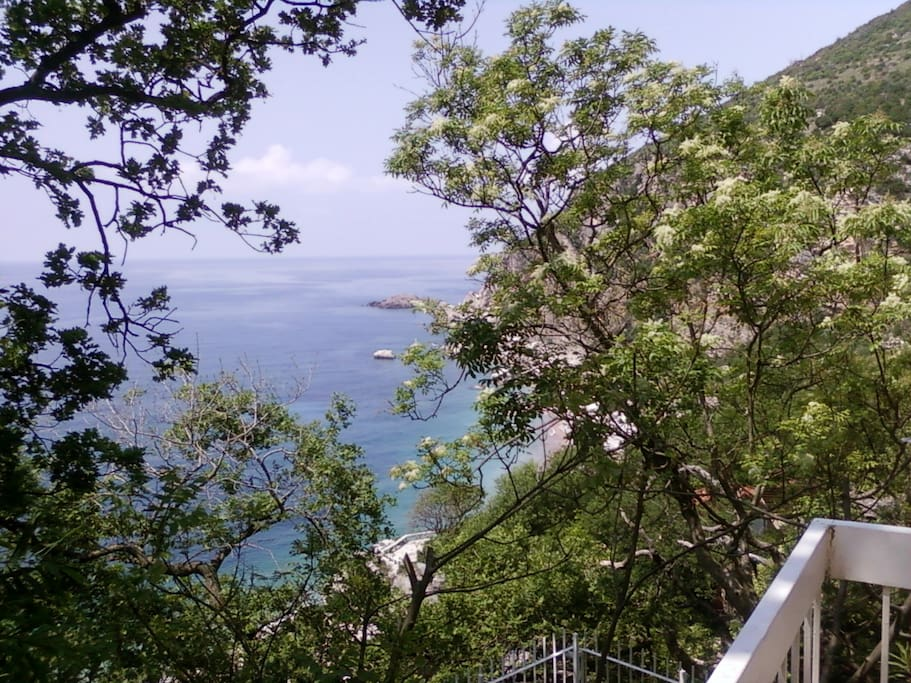 Sea view from terrace in front of house