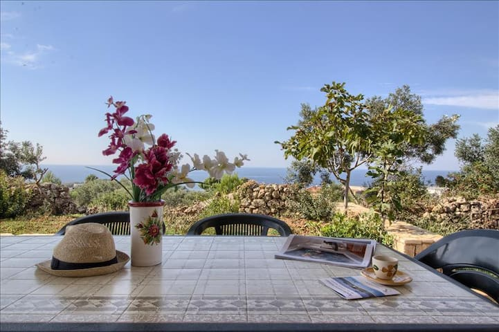 Il Pino - lovely house with sea view