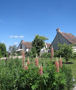 Loire Valley country cottage France - Le Grand-Pressigny - 獨棟