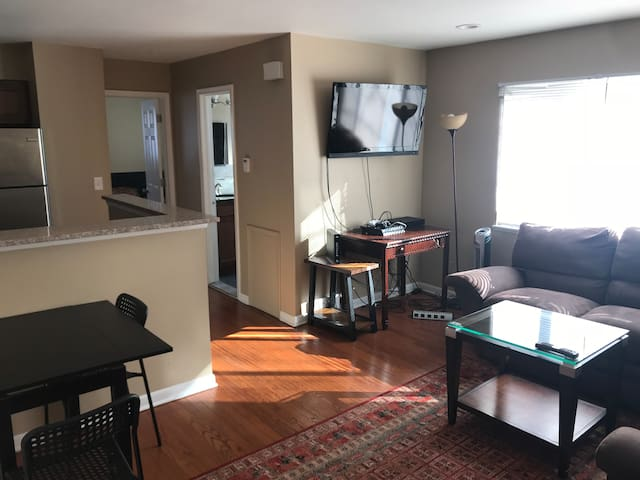 Newly Renovated Downtown Royal Oak Apartment 102a