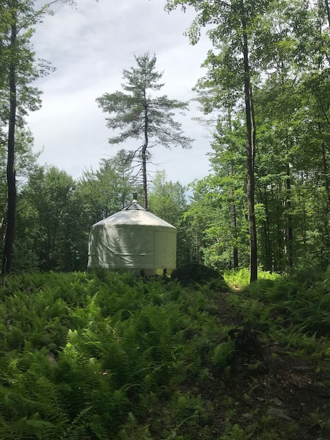 Magical Hermit Yurt - Private White Mountain Woods