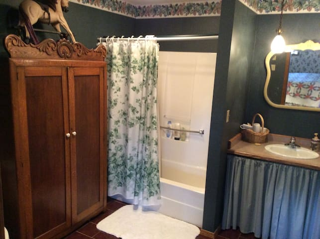 Large, handicapped accessible bath in the Ivy suite.