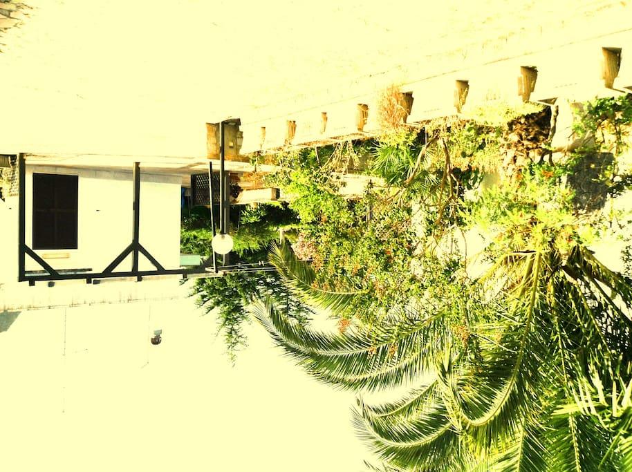 giardino e piazzale esterno