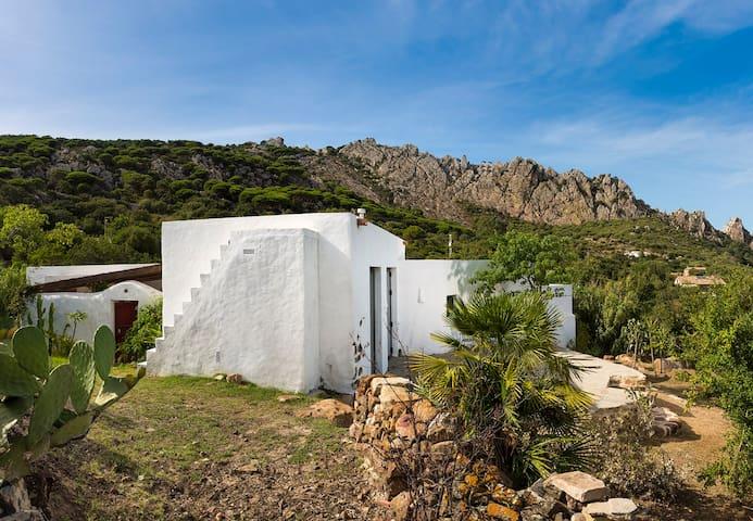 Villa La Alquería - Tarifa - Huis