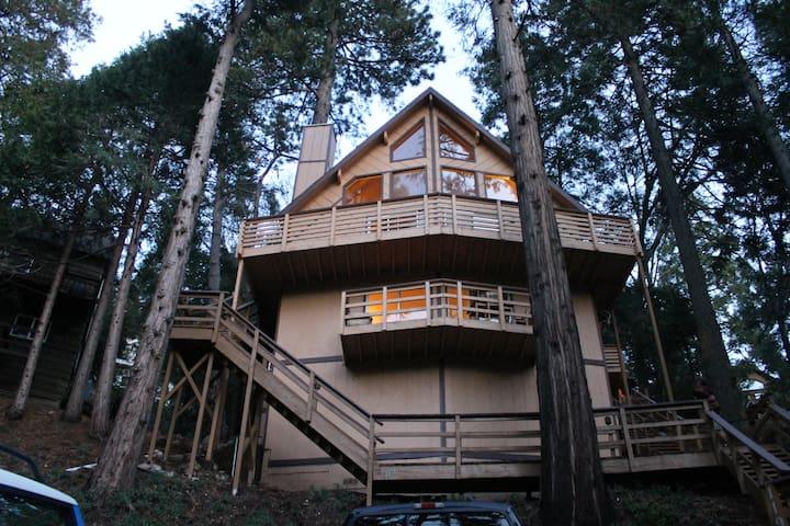 Walk to Lake from cabin studio w beach club access