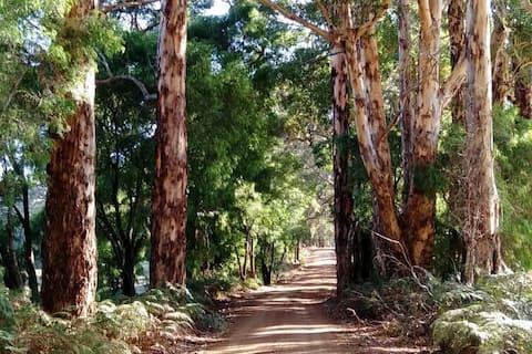 Margaret River  Karri Forest Retreat  🌲🌲🌲🌲🌲🌲