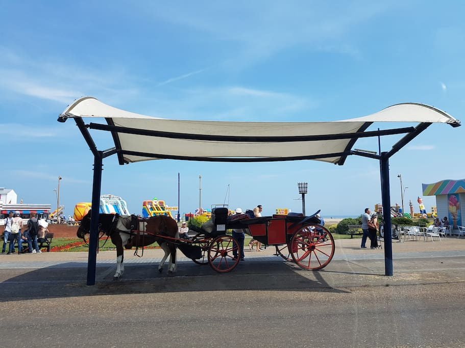 Horse Drawn Carriages on the Seafront