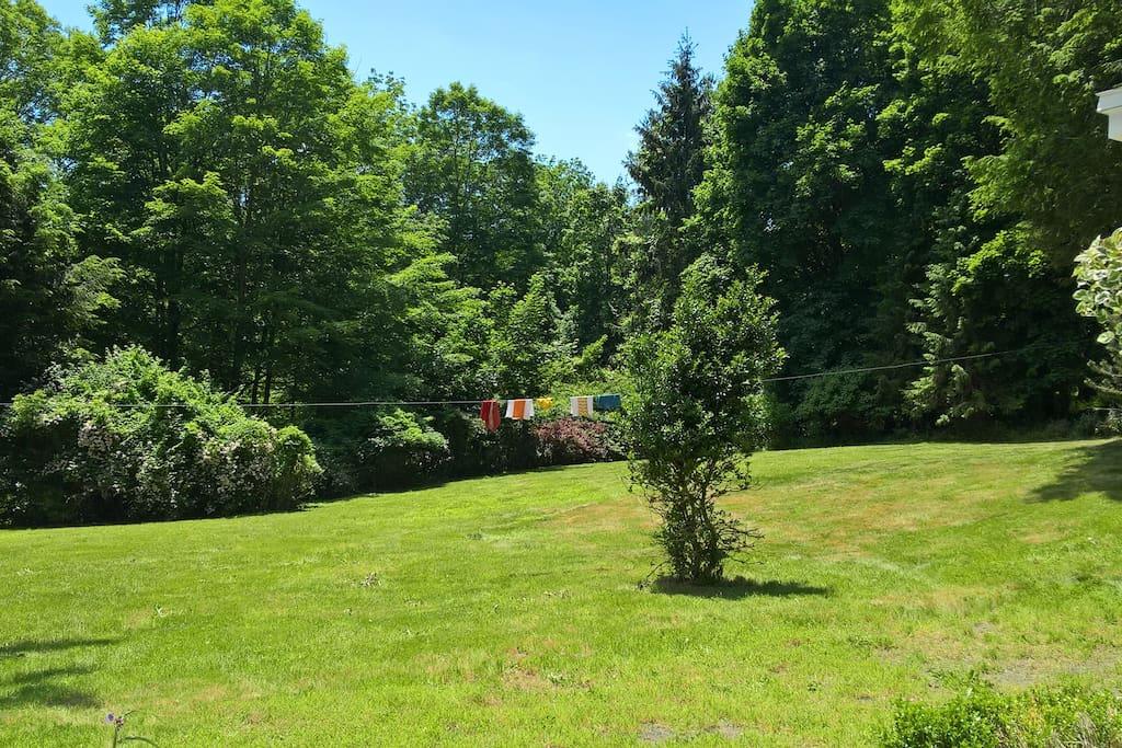 Large, sunny back yard
