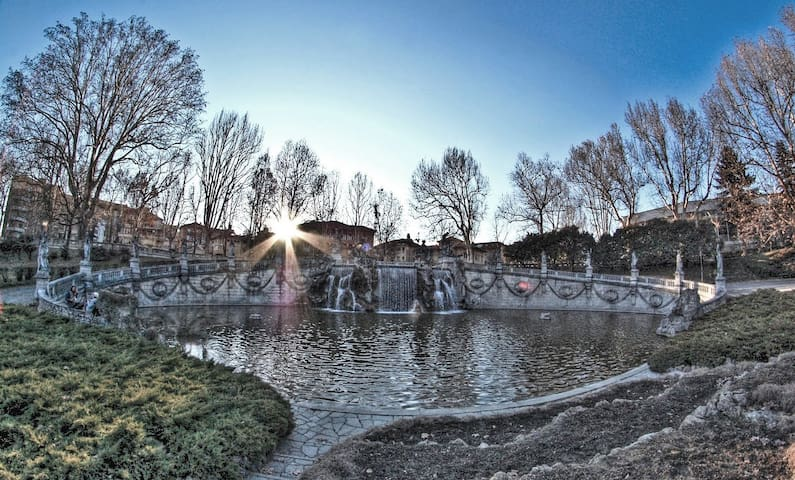 Urban oasis in artist villa