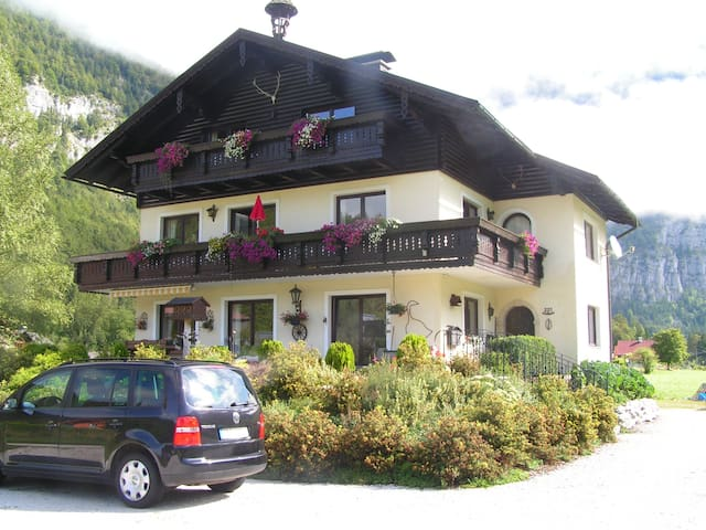 Quietly located with a gorgeous vie - Obertraun - Apartmen