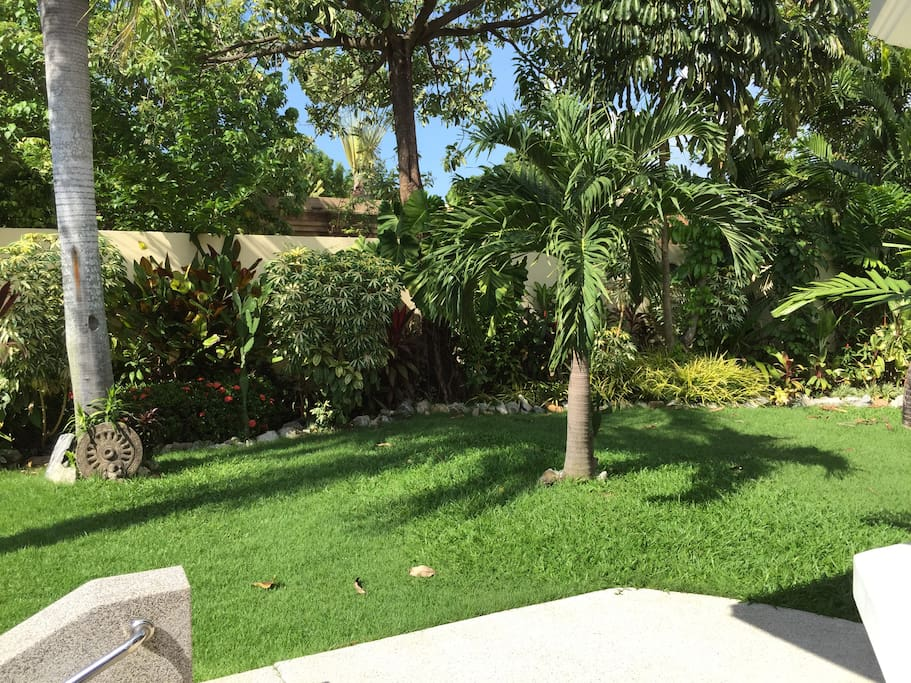 nice tropical private gaden