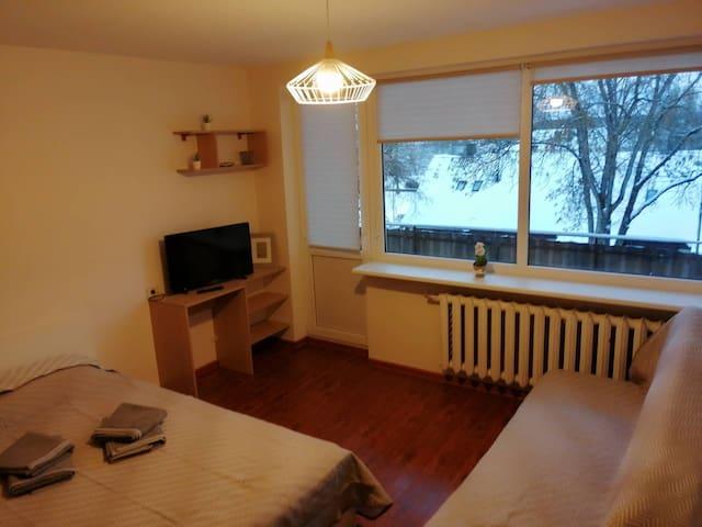 Cozy studio in Trakai