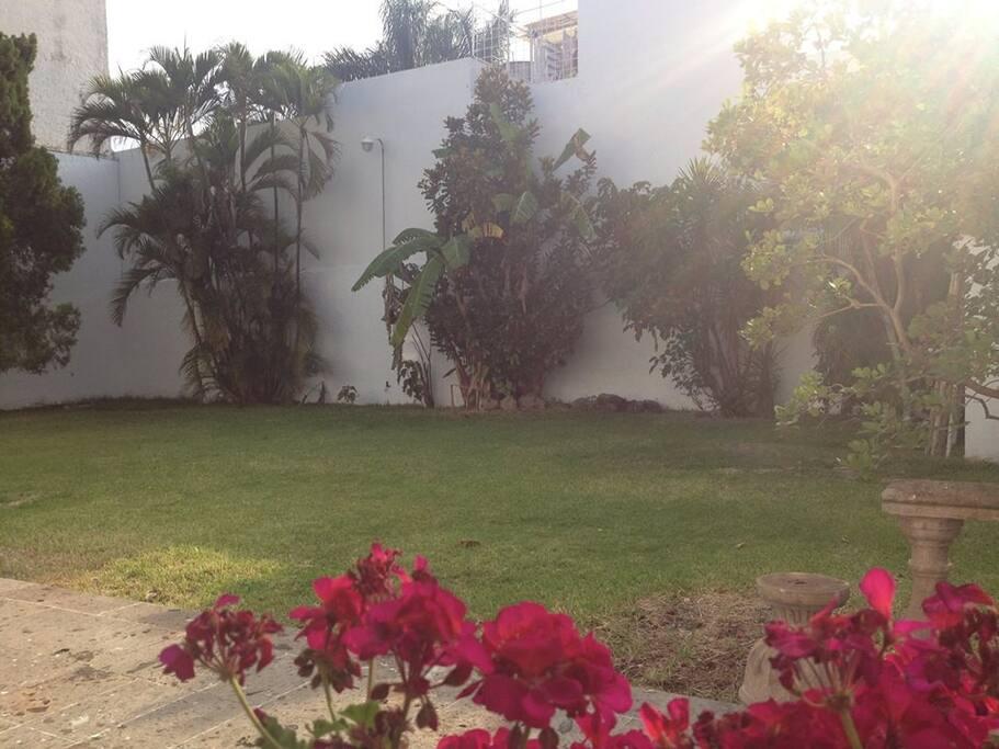Jardin con camastros para tomar el sol