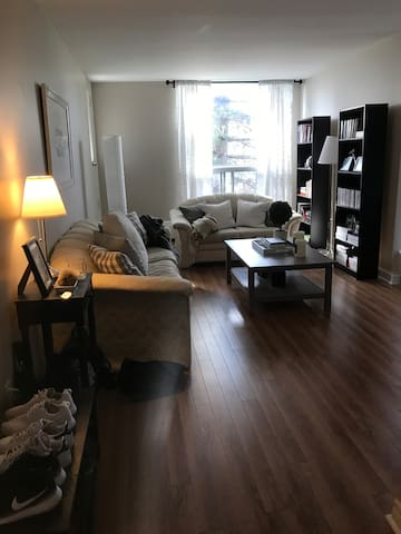 One Bedroom Spacious Apartment - Montreal
