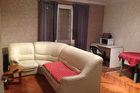 Grande chambre en plein centre - Quimper - Wohnung
