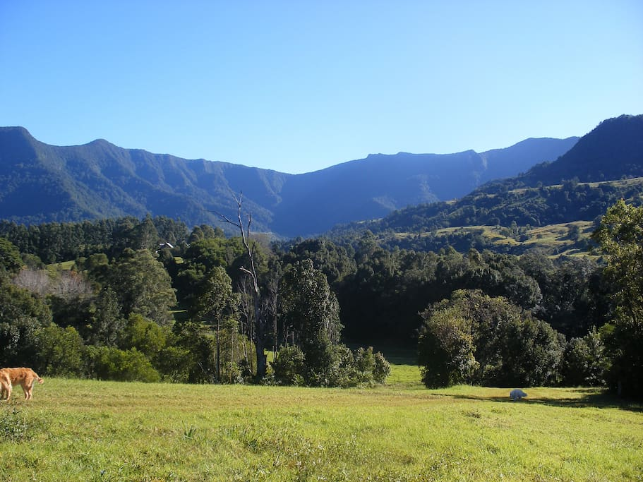 Spectacular views of the World heritage Border Ranges National Park