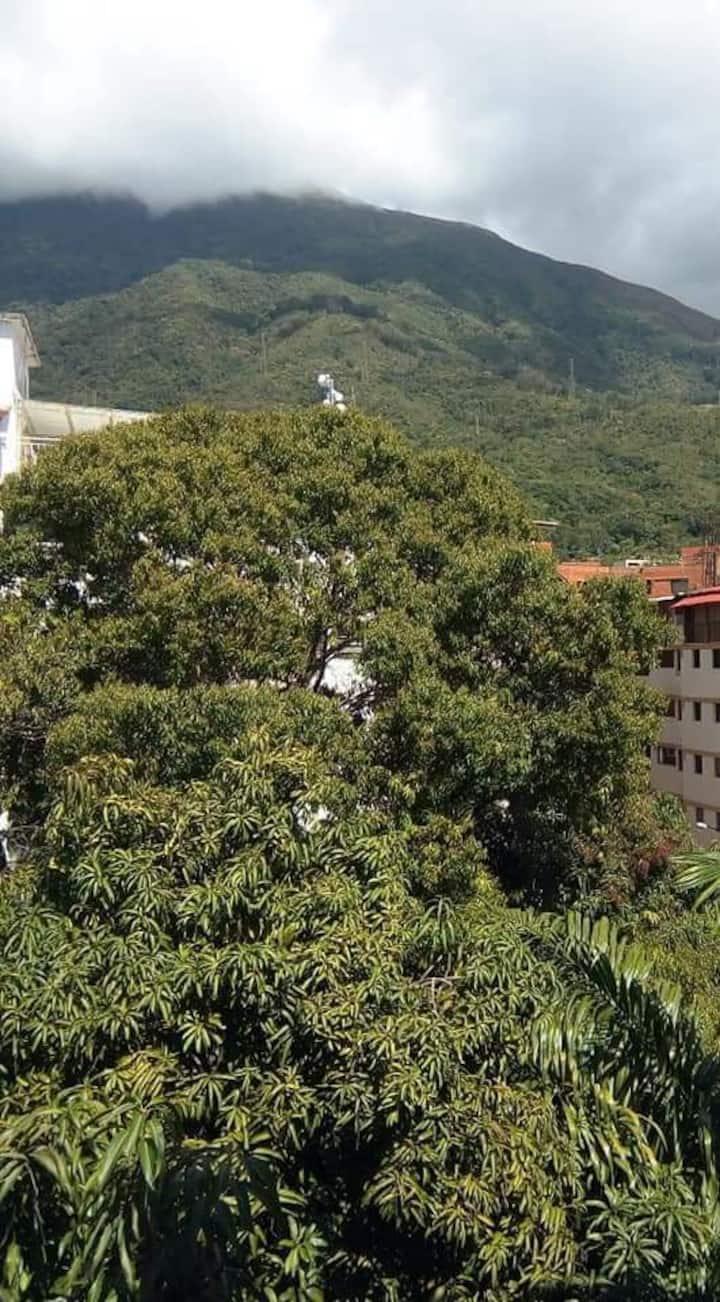 Apartamento tipo anexo  independiente de 40 mts