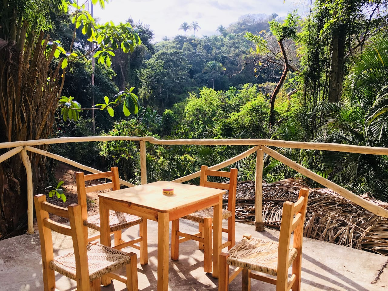 Panoramic jungle views from the raised lounge area