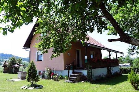House near Plitvice Lakes (9 persons) - Saborsko