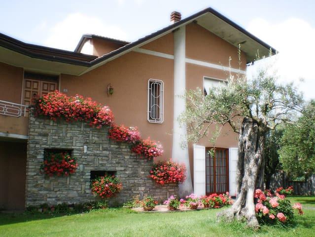 Il Giardino degli Ulivi - Castelnuovo Magra - Huoneisto